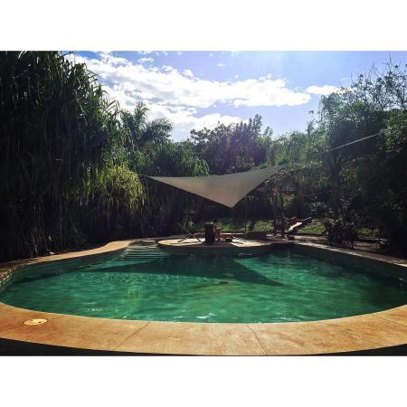 Hotel Mauna Loa: photo1.jpg