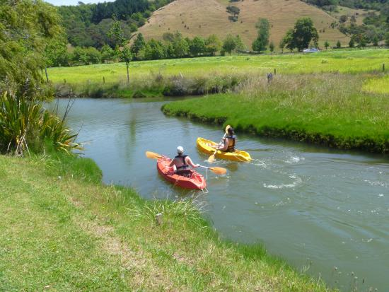 At Parkland Place: Kayak at the back of the property