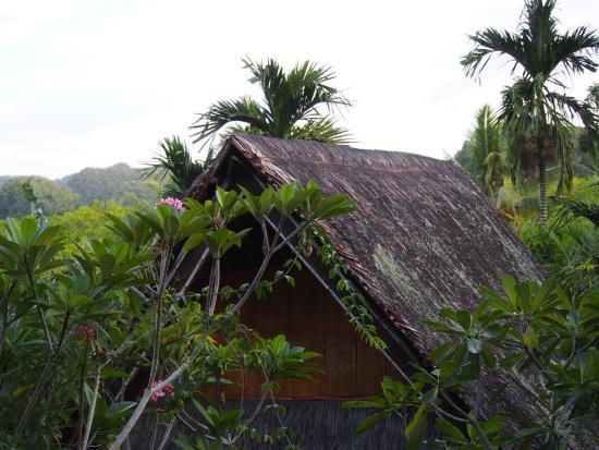 Palau Plantation Resort: view from room