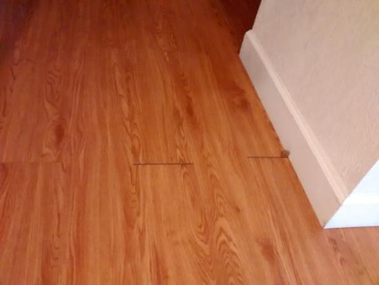 Motel 6 Springfield: 'd recall the flooring installer and fix this (it's easy)