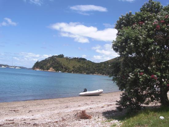 Pulau Waiheke, Selandia Baru: The view simply across the road