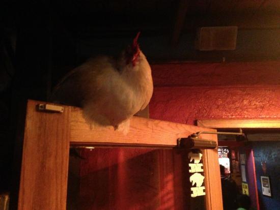 Klondike Pizza: Rooster acts as doorman