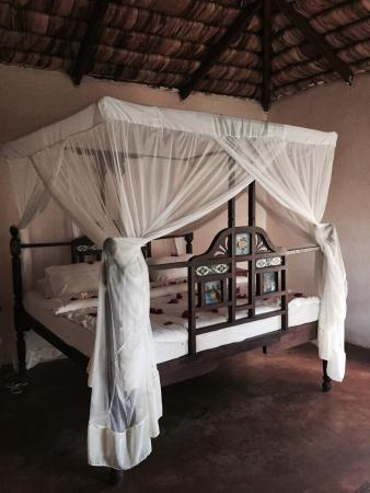 Arusha Safari Lodge: photo4.jpg