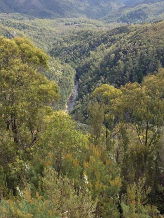 Tasmânia, Austrália: View from Donaghy's Hill Lookout