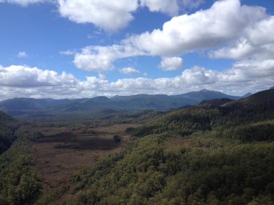 Tasmanien, Australien: View from Donaghy's Hill Lookout