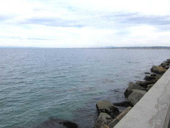 View from Coast Guard Pier of Monterey Bay, Monterey, Ca