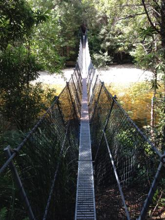 Derwent Bridge, Avustralya: Suspended Bridge