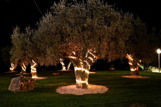 Christmastime at Hotel degli Ulivi