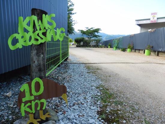 Takaka Camping & Cabins : Caution Kiwis