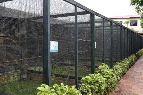 Perai, Malasia: tiny cages