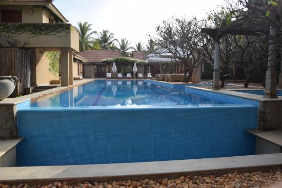 Shreyas Yoga Retreat: pool