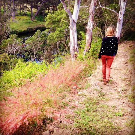 Barrington Hideaway: The walk down to the river