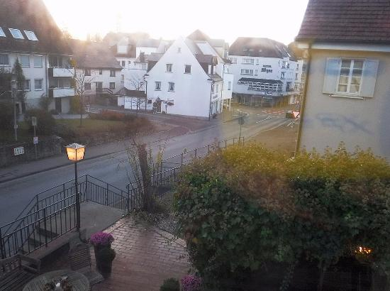 Laupheim, Deutschland: View out from the room / Вид из номера