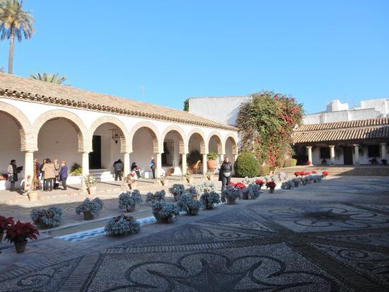 ブーゲンビリアが綺麗でした - Picture of Palacio Museo de Viana, Cordoba - TripAdvisor