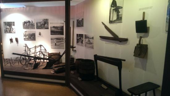 Muzeum Gornoslaskie