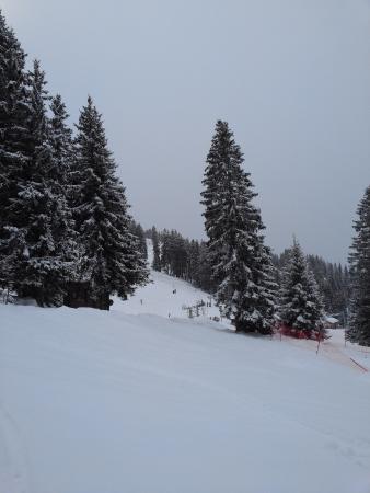 Haute-Savoie, Francia: Col de la Croix fry