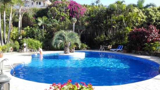 Tigaiga Suites : Inside swimmingpool