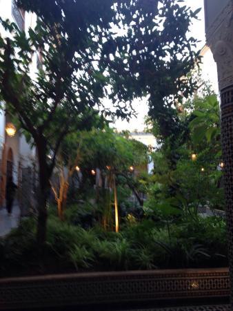 Eden à Palais Amani : photo0.jpg