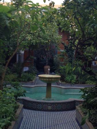 Eden à Palais Amani : photo1.jpg