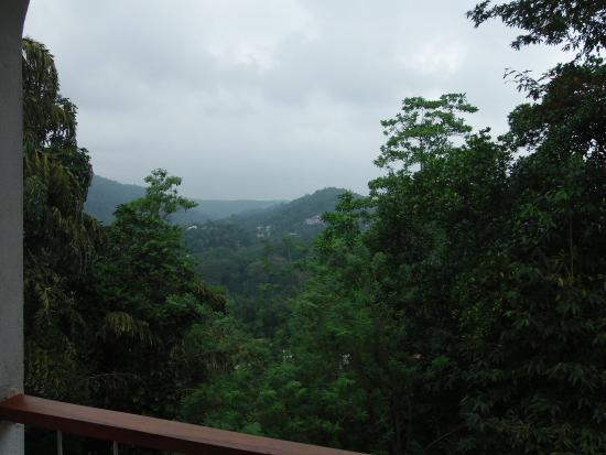 Regent Lodge: View from the room