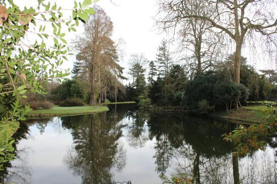 Chatenay-Malabry, فرنسا: Vue du bassin