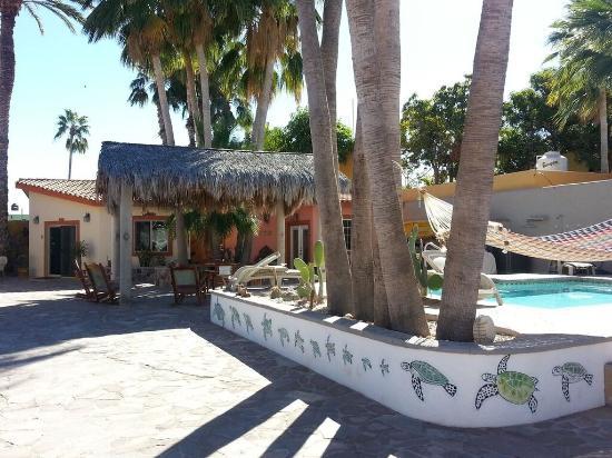 El Tiburon Casitas: Pool and Palapa