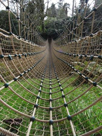 Сент-Остелл, UK: rope bridge