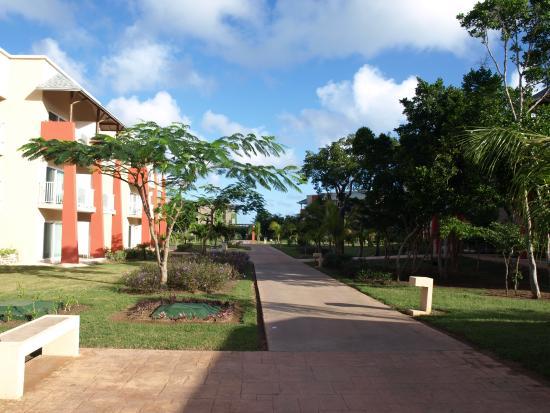 Grounds picture of melia jardines del rey cayo coco for Jardines del rey
