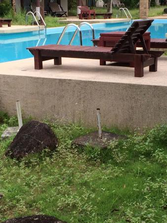 The Kib Resort & Spa照片