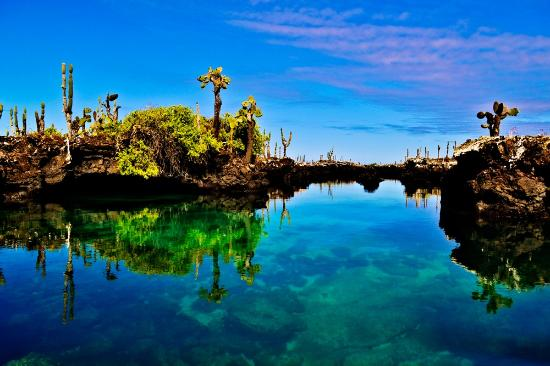 Puerto Villamil, เอกวาดอร์: Formaciones
