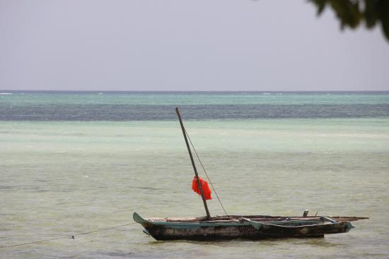 Jumbo Club Orange : Vista spiaggia