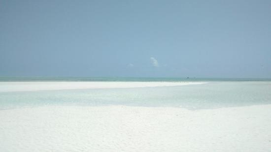Jumbo Club Orange : Spiaggia durante la camminata