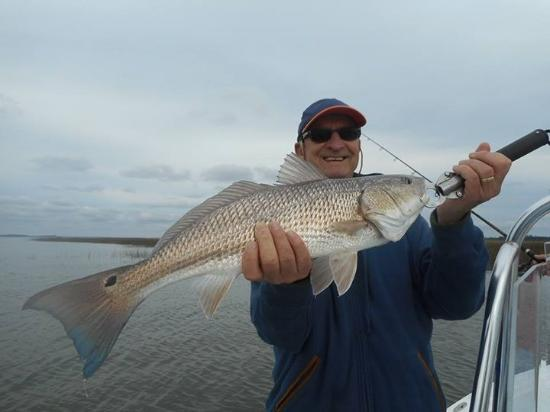 Port Royal, SC: Nice redfish