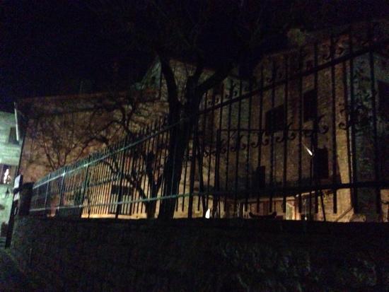 Residenza di Via Piccardi: photo9.jpg