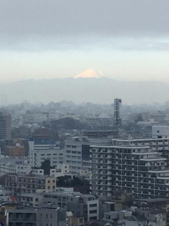 The Westin Tokyo: View of Mt Fuji