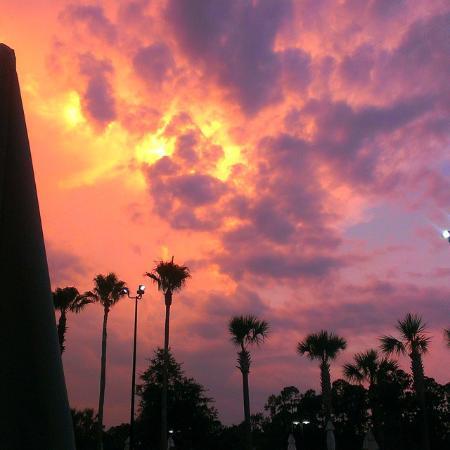 Waldorf Astoria Orlando: Sunset at the pool area