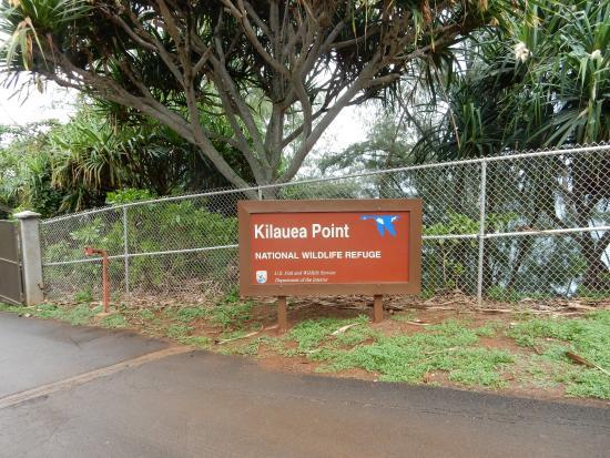 Kilauea, Hawái: park