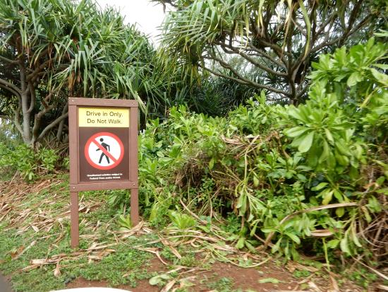Kilauea, Hawaje: can't walk in