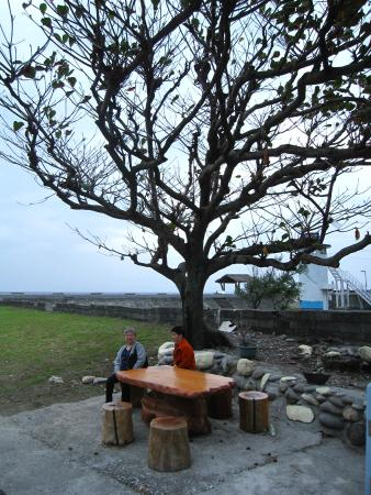 Hualien, Tayvan: Sitting under a beautiful tree along the beach