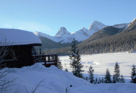 Mount Engadine, Canadá: View of our cabin and surrounding meadow.