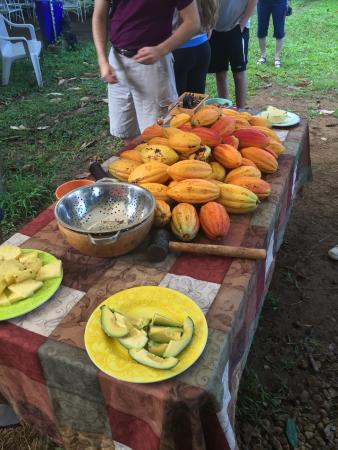 Kilauea, Hawái: Cocoa pods & local fruits