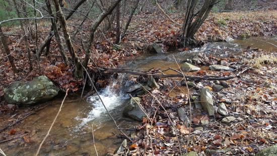 Crozet, VA: Creek