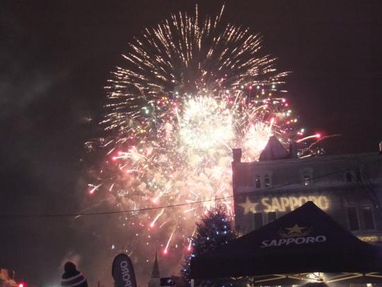 Hotel Chateau Laurier: Fireworks behind the hotel