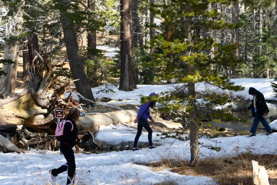 Idyllwild, CA: Best way to get a work out