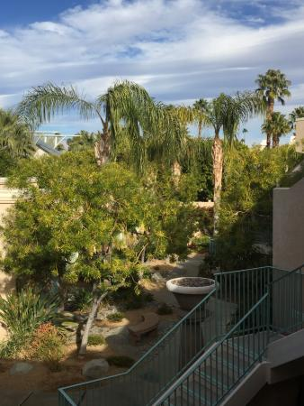 Desert Sun Resort: View of the Grounds