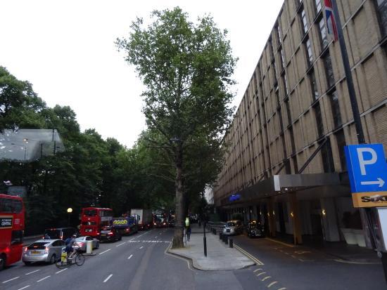 힐튼 런던 켄싱턴 사진