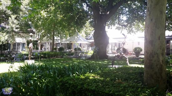 Franschhoek, Sudafrica: Garden