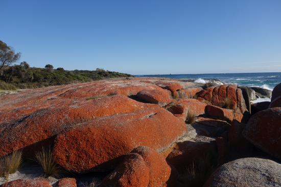 Tasmanien, Australien: bay of fire tasmanie