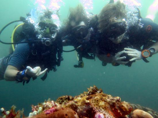 Blue Marlin Dive - Gili Trawangan: Blue Marlin Dive