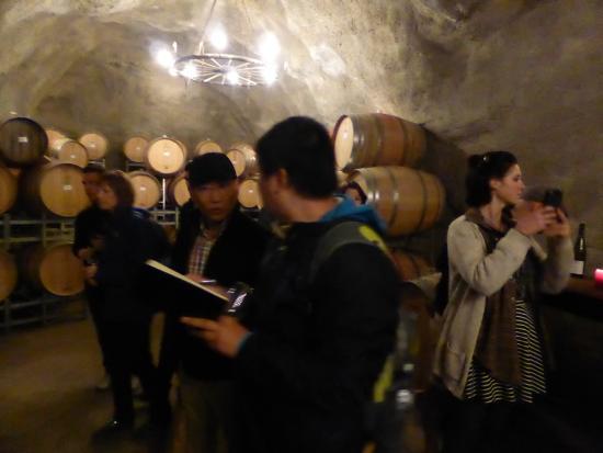 Queenstown, Nuova Zelanda: Wine Cave at Gibbston Valley Winery